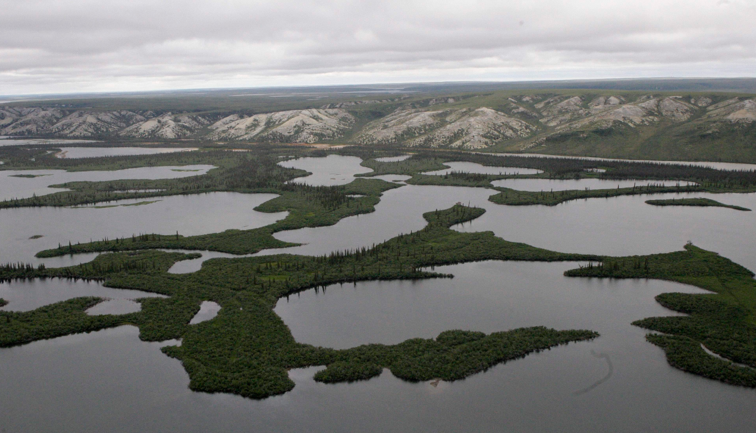 The Mackenzie River Delta, in Northwest Territories, Canada, is shown. (Rick Bowmer/AP)