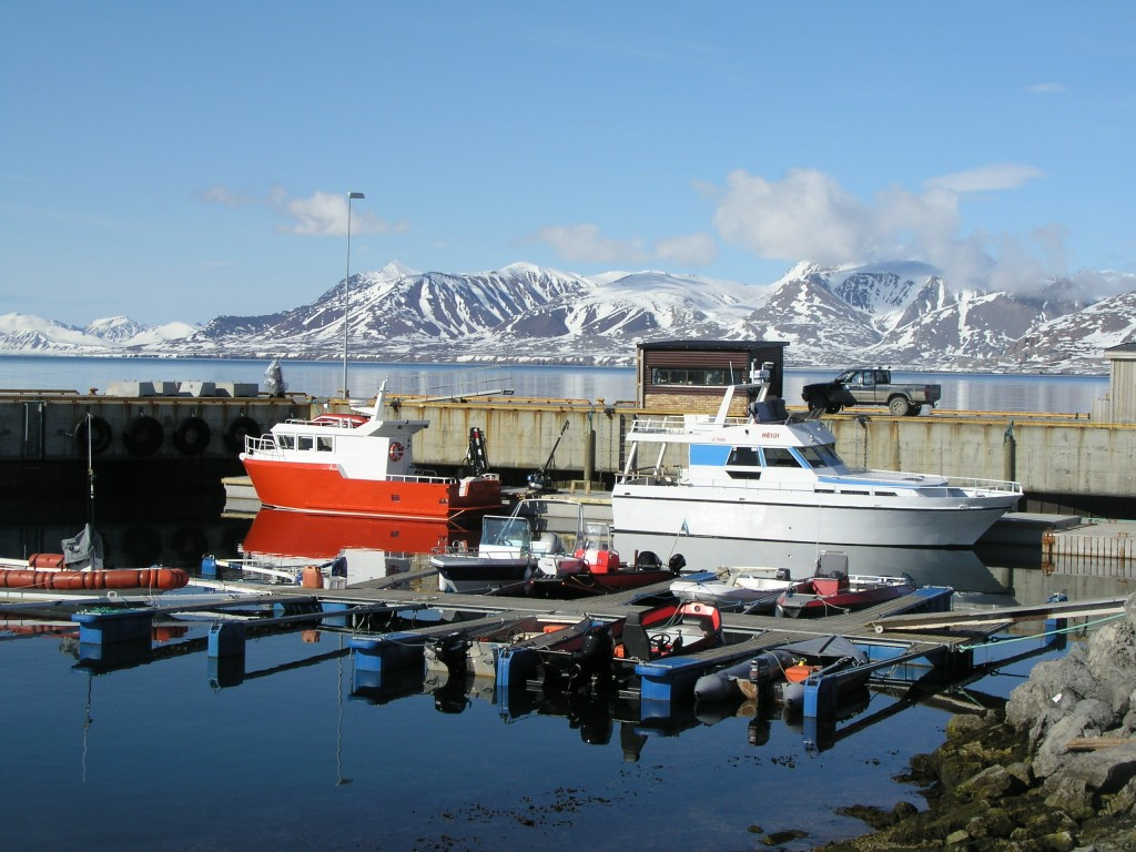 harbour-1024x768