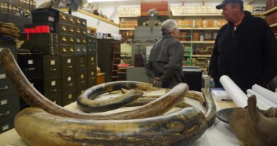 John Reeves (R) in his library with some mammoth tusks. (Mia Bennett)