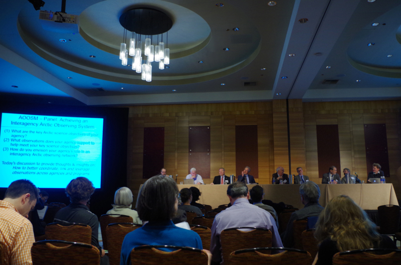 "Panel Discussion: ""Achieving an Interagency Arctic Observing System."" (Mia Bennett)"