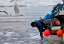U.S. officials optimistic about Arctic fishery agreement