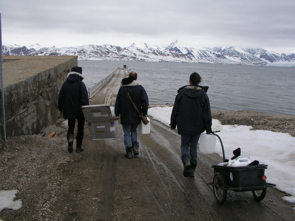 Can Arctic marine biologists work fast enough to keep up with climate change? (Irene Quaile)