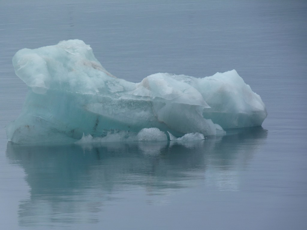 Melting ice in the waters off Spitsbergen. Already too hot for some? (Irene Quaile)