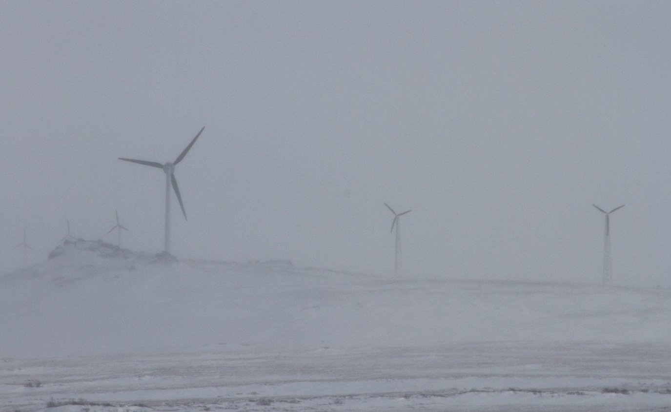 A wind farm in Alaska in 2014. New rules in the state may make it easier for small renewable energy projects to sell their power to the grid. (Mark Thiessen/AP/Getty Images)