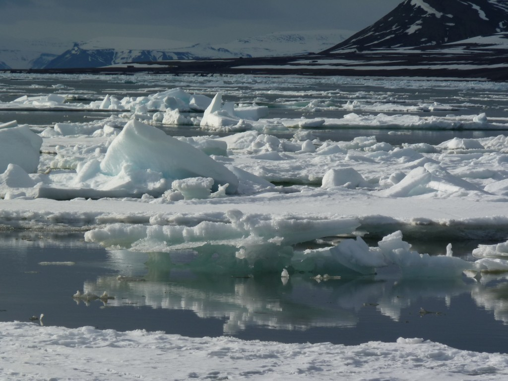Ice off Svalbard. (Irene Quaile)