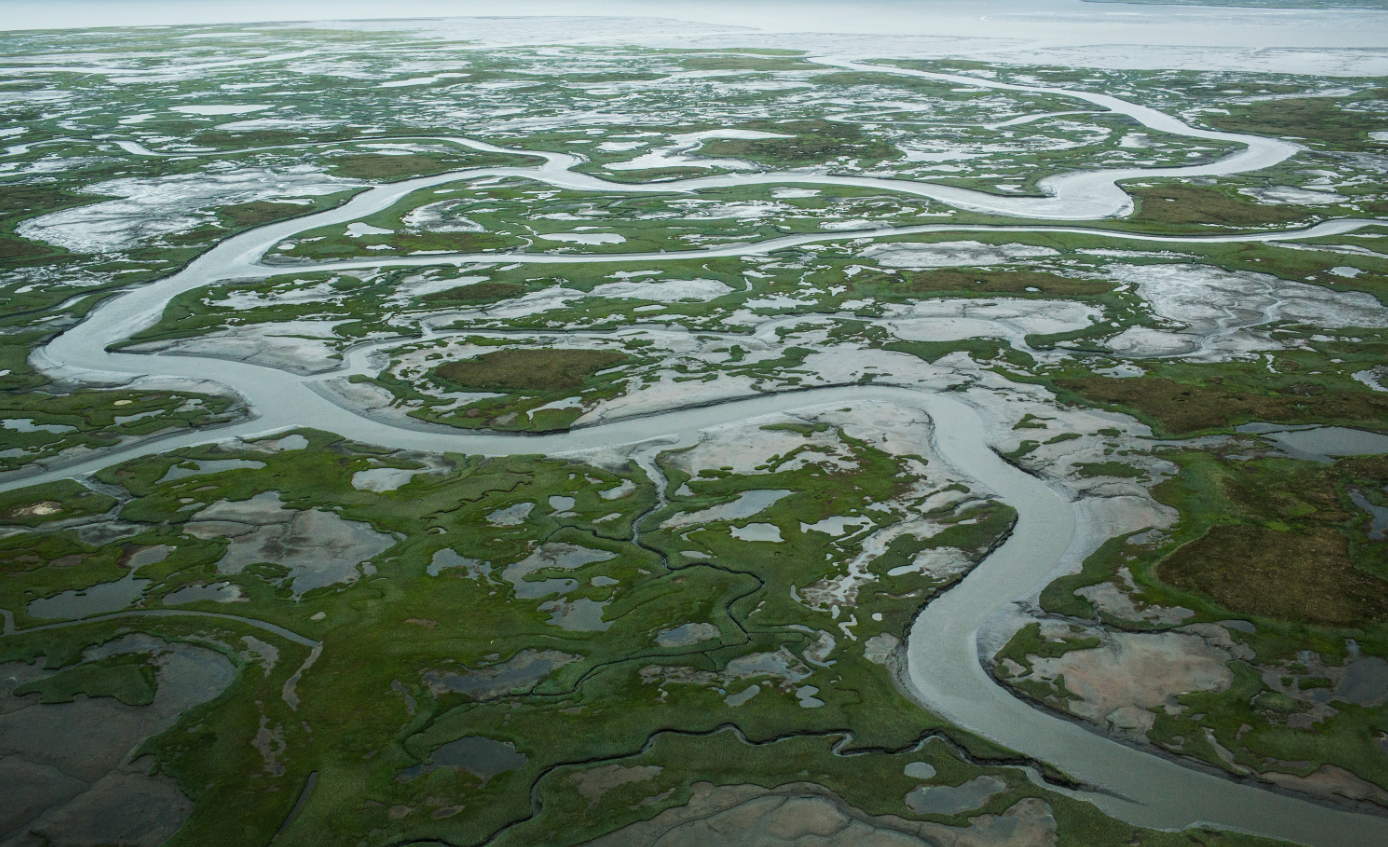 The marshy, tundra landscape surrounding Newtok is seen from a plane on July 6, 2015 outside Newtok, Alaska. (Andrew Burton/Getty Images)
