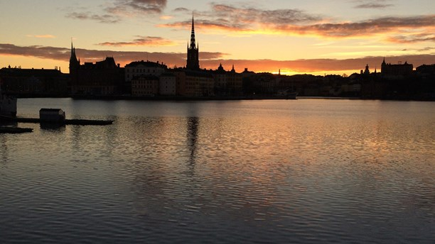 Will we still be able to get our drinking water from Sweden's Lake Mälaren in 85 years? (Brett Ascarelli / Radio Sweden)