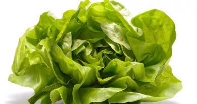 Getting fresh produce to the Arctic at an affordable price is a challenge in all circumpolar regions.  But one Alaska company is offering their solution - hydroponic farming. (iStock)