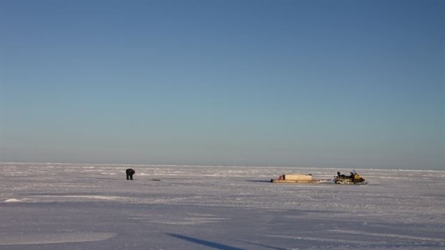 An Inuit hunter stands watch over a seal breathing hole in the sea ice. (Levon Sevunts/Radio Canada International)