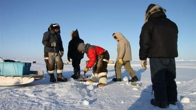 Inuit hunters in Canada's eastern Arctic territory of Nunavut. The hunters are setting up nets to hunt fish and seal. (Levon Sevunts / Radio Canada International)