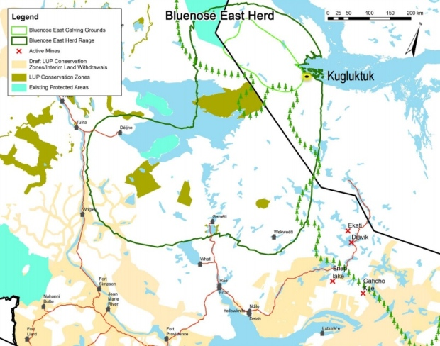 The Bluenose East caribou range (dark green circle) extends to N.W.T.'s Dene communities of Deline, Gameti and Wekweeti, but the calving grounds (light green circle) lie entirely on the Nunavut side of the border. (GNWT-ENR)