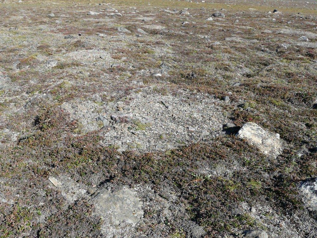 Permafrost structures in Greenland. (Irene Quaile/Deutsche Welle)
