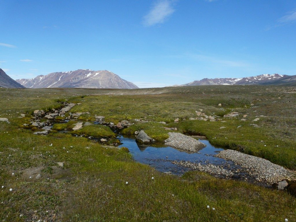 Arctic freshwater systems are changing with the climate. (Irene Quaile/ Deutsche Welle)