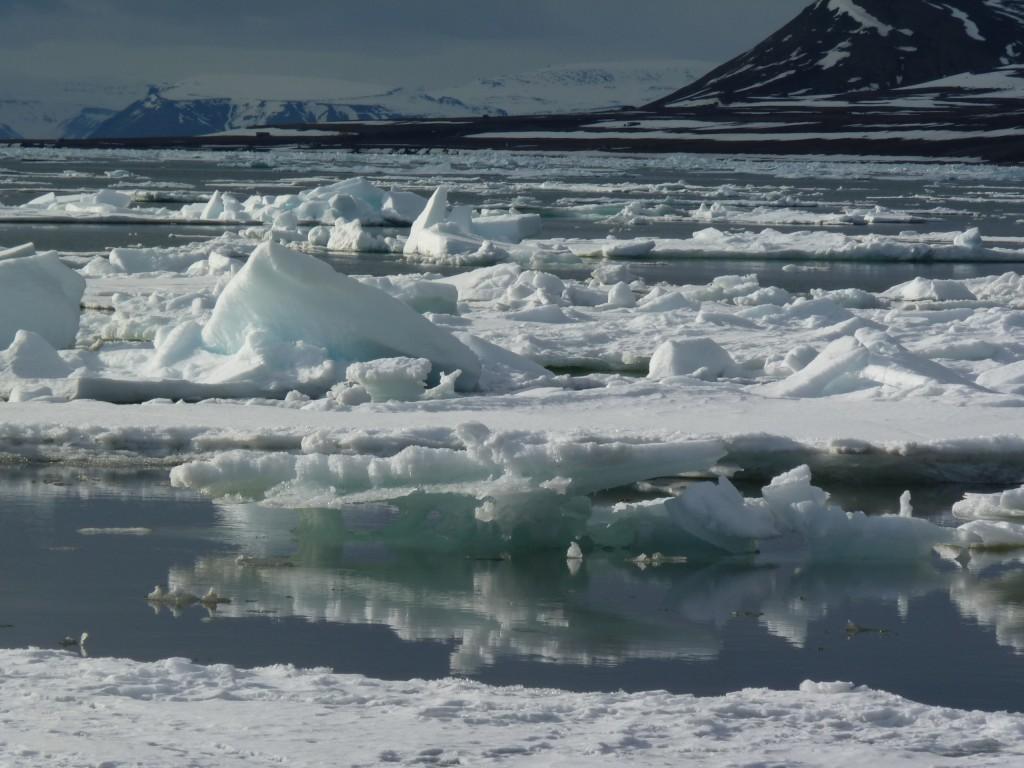 Melting ice off Svalbard (Photo: Irene Quaile)