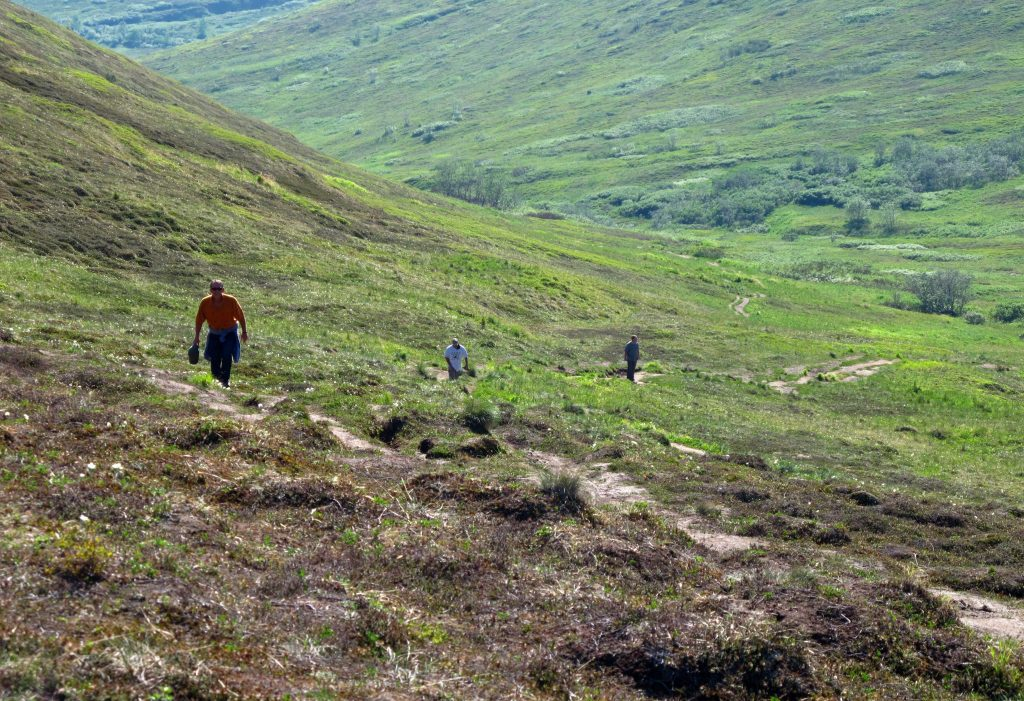 In this photo taken Wednesday, June 17, 2015, hikers explore a trail at Arctic Valley, nestled in the Chugach State Park in the greater municipality of Anchorage, Alaska. Rachel D'Oro/AP Photos