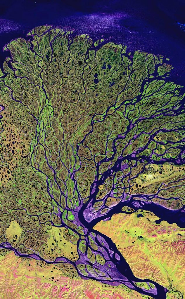 This undated image provided by the Smithsonian Institution shows The Lena River flowing through Russian Siberia to the Arctic ocean, as the river enters the Laptev Sea , and is part of an exhibit at the National Air and Space Museum in Washington entitled: Earth from Space. AP Photo/Smithsonian