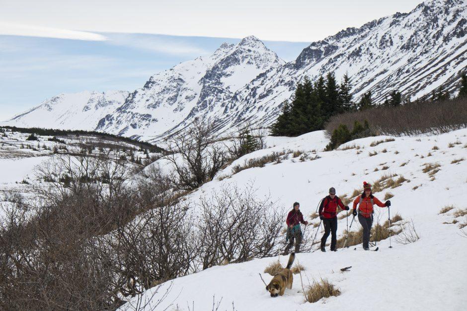 From left, Johanna Reigl, Chip Serns and Gina Wilson-Ramirez ski and along a trail in Chugach State Park near Powerline Trail on Thursday, March 31, 2016. Marc Lester / ADN