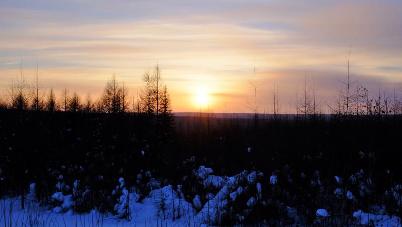 Sunset over the taiga. Photo by Mia Bennett