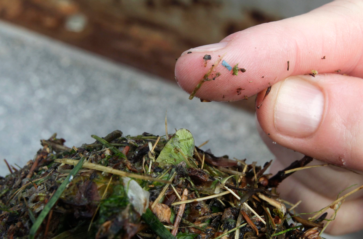 A piece of microplastic on a researcher's finger in Washington State in 2010. Alaska has about 30 tons of plastic debris per mile along its shorelines a congressional panel was told on Tuesday. (Ted S. Warren / Associated Press / The Canadian Press)