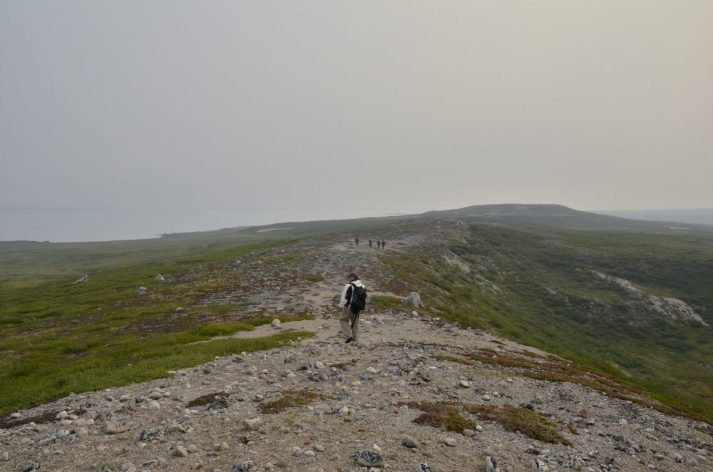 Dan Hodkinson, a field operations manager with NASA's Carbon Cycle and Ecosystems Office, and other NASA researchers hike to remote locations to measure the condition of vegetation in the Arctic tundra of Canada's Northwest Territories. (Peter Griffith / NASA)
