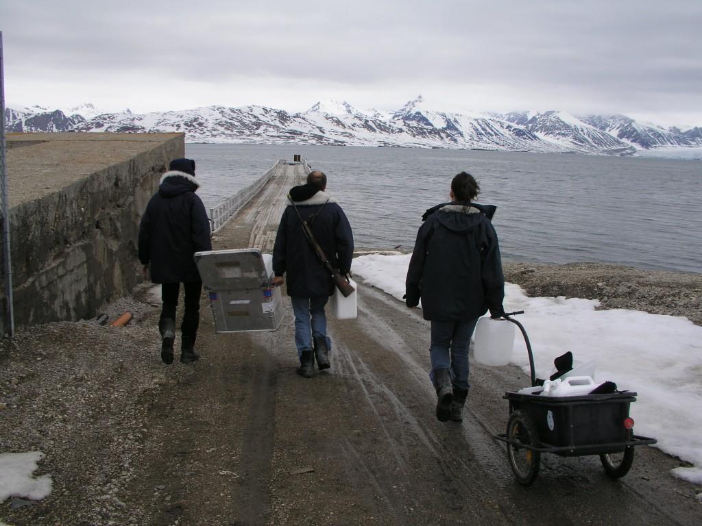 British Arctic marine biologist collaborating with Dutch colleagues in Ny Alesund, Spitsbergen. (Irene Quaile/Deutsche Welle)