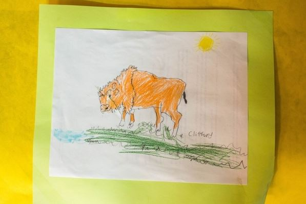 A student drawing of a wood bison at the Innoko River school in Shageluk (Loren Holmes / Alaska Dispatch News)