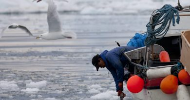 Better climate adaptation strategies needed across the Arctic