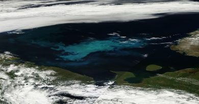 The algae boom in the Barents Sea is highly visible. This photo is based on satellite images from July 6th. Novaya Zemlya can be seen to the east while Finnmark, the Kola Peninsula, the White Sea area (under the skies), Cape Kanin and the Island of Kolguyev are visible from the west to the south-east. (Photo: NASA EOSDIS Worldservice)