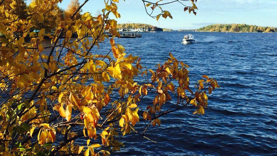Boating in the Saimaa lake region is an increasingly popular summer pastime. (Heli Mälkiä / Yle)