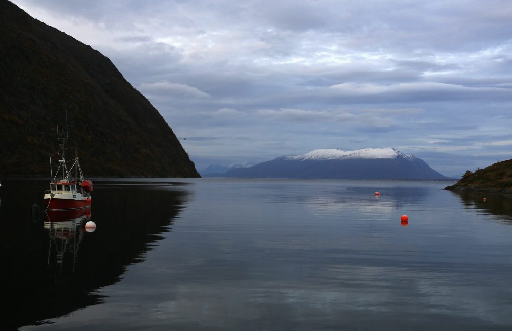 A fishing boat is anchored in the natural harbor of Kopangen in Lyngen-Fiord, north of the Arctic Circle, October 1, 2014. (Yannis Behrakis/REUTERS)