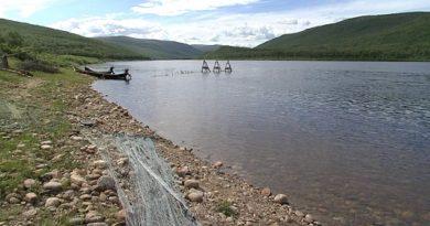 Utsjoki residents at odds over Tenojoki salmon fishing restrictions