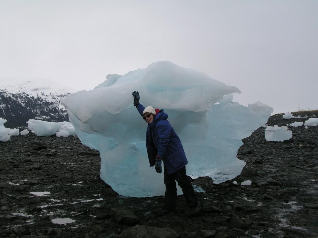 Iceblogger, iceblocker? (Irene Quaile/Deutsche Welle)