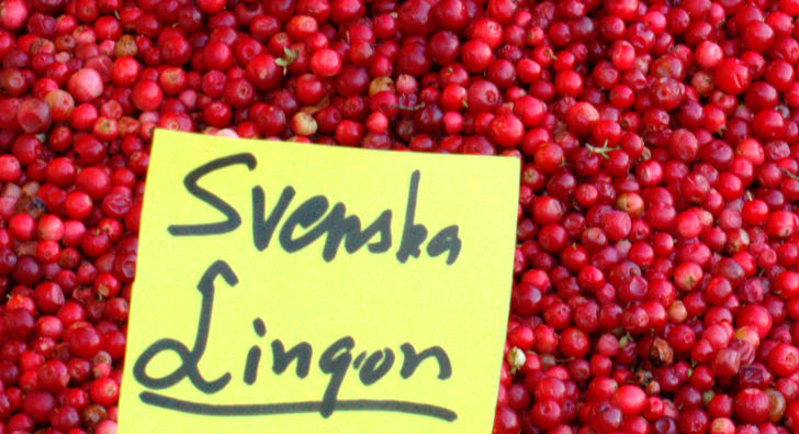 Swedish Pancakes with Lingonberries from Kristina, The Budget Diva ...