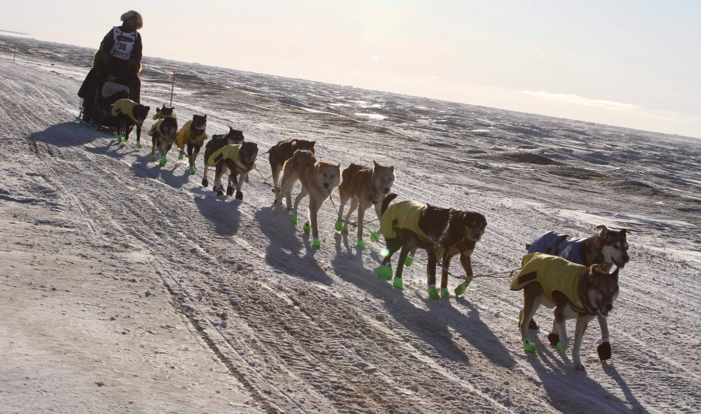 mushing-alaska-mushers-frustrated-over-cell-phones-on-iditarod-trail