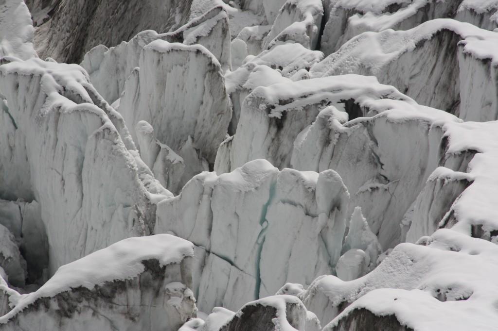 arctic_climate_anti_trump_card_davos