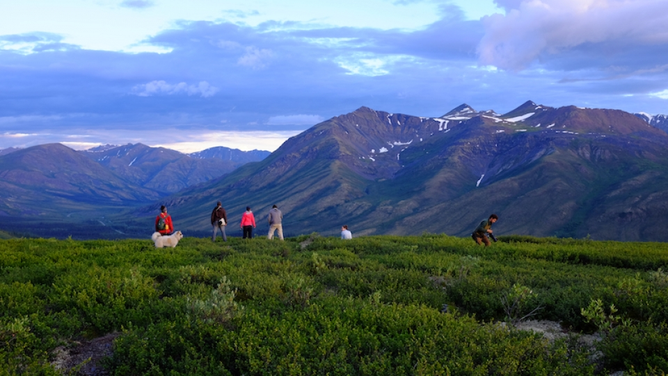Taking photos of the midnight light from Goldensides, a trail in Tombstone Territorial Park in Yukon, Canada. (Mia Bennett)