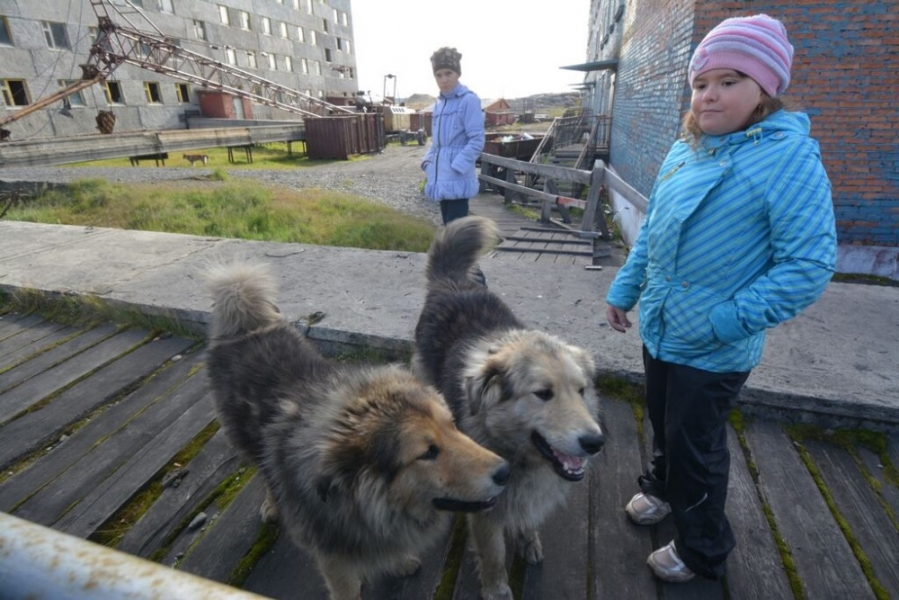 Polar dogs guard the children. (Thomas Nilsen/The Independent Barents Observer)