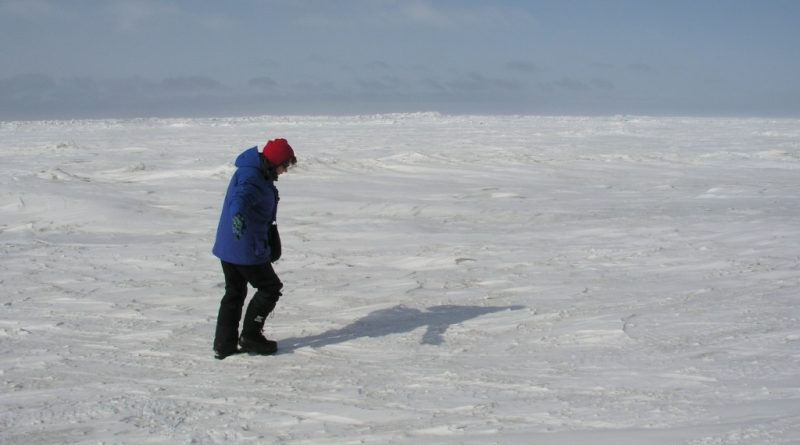 ice-blog-arctic-sea-ice-is-the-minimum-maximum-the-new-normal-4