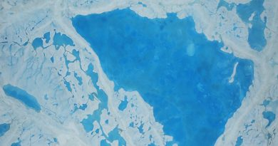 Arctic Ocean on track to be ice-free in summer by 2040, say scientists