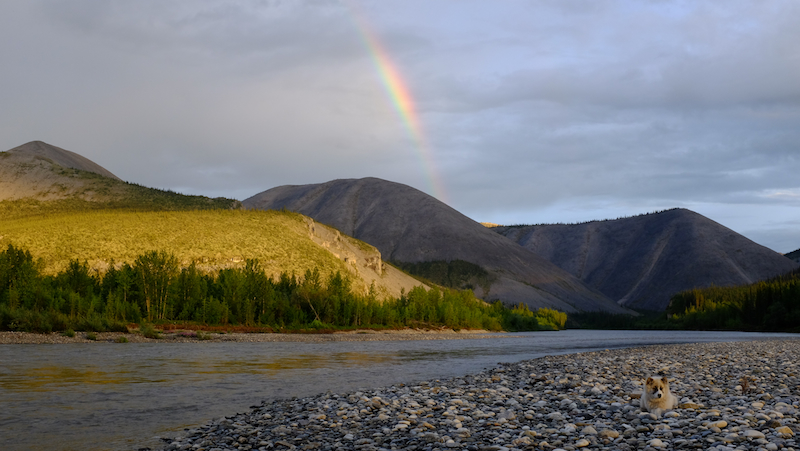 blog-obituary-for-an-arctic-river-7