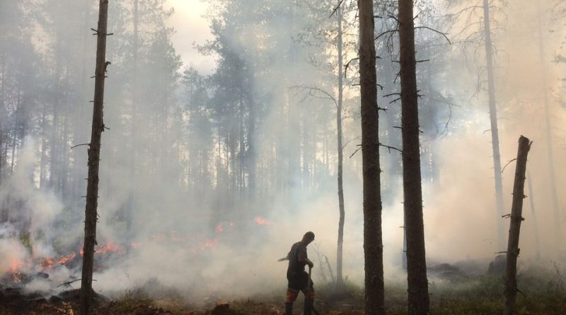 call-to-increase-controlled-burning-of-finnish-forests