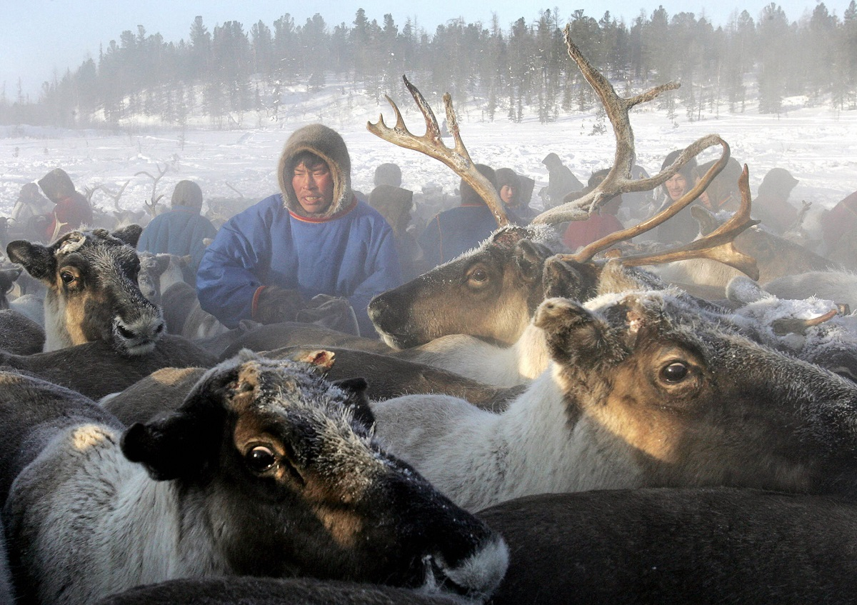canadian-researchers-count-on-siberian-reindeer-herders-to-solve-archaeological-mystery-12