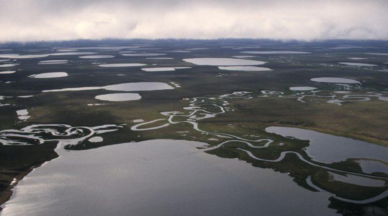 conservation-groups-girding-for-battle-over-national-petroleum-reserve-in-alaska