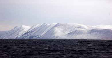 unesco-mission-makes-first-visit-to-russian-arctic-island-of-wrangel