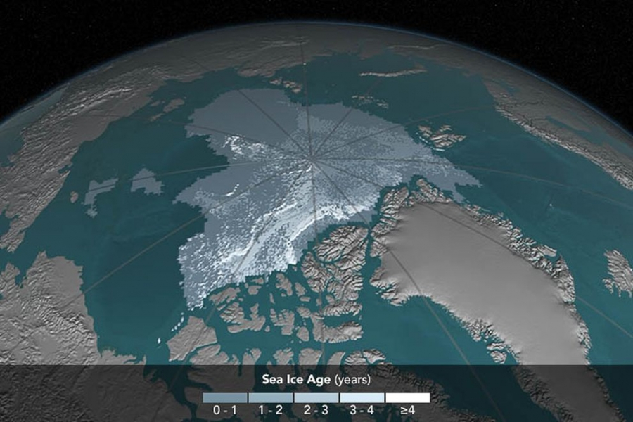 Arctic sea ice coverage, in 2016. (Cindy Starr/NASA)