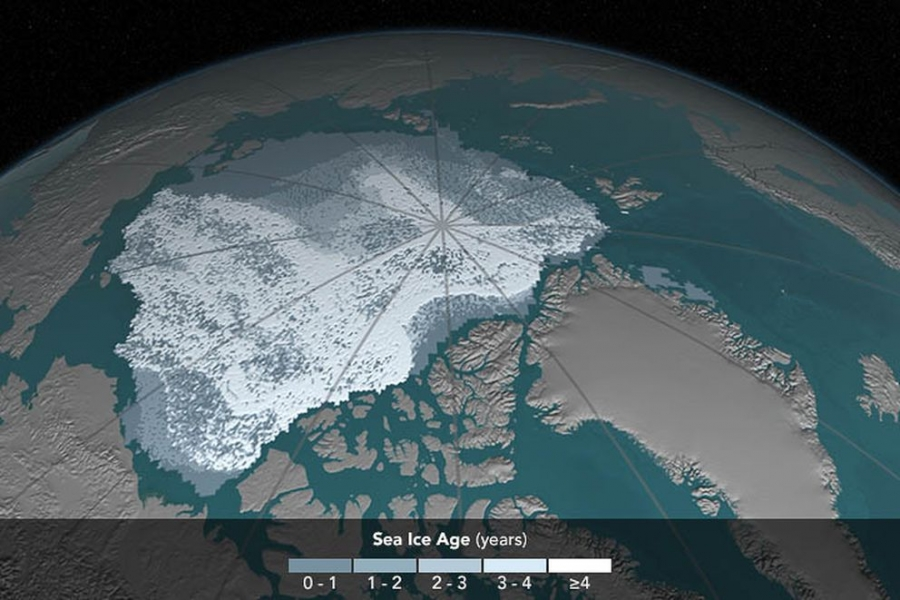 Arctic sea ice coverage, 1984. The area covered by Arctic sea ice at least 4 years old has decreased from 718,000 square miles in September 1984 to 42,000 square miles in September 2016. Ice that has built up over the years tends to be thicker and less vulnerable to melting away than newer ice. In these visualizations of data from buoys, weather stations, satellites and computer models, the age of the ice is indicated by shades ranging from blue-gray for the youngest ice to white for the oldest. (Cindy Starr/NASA)