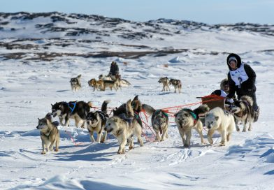 Annual race aimed at reviving Inuit dog sledding tradition set to kick off in Nunavik