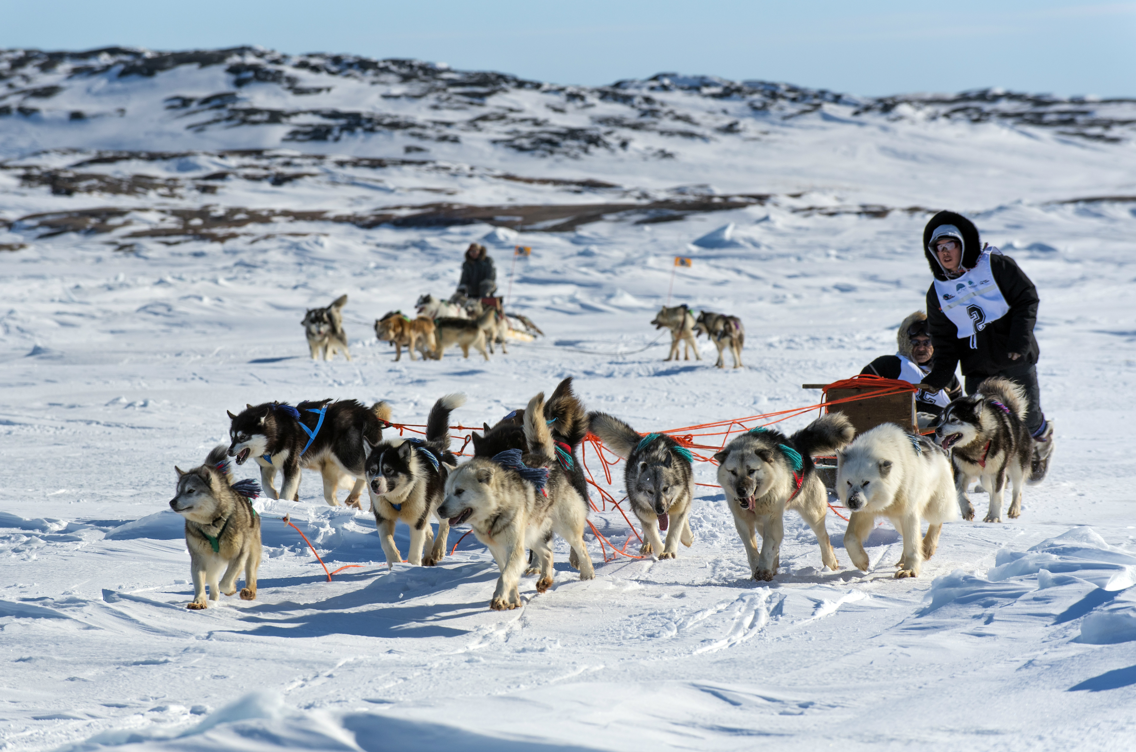 Alaska Corporation Search >> Annual race aimed at reviving Inuit dog sledding tradition set to kick off in Nunavik – Eye on ...