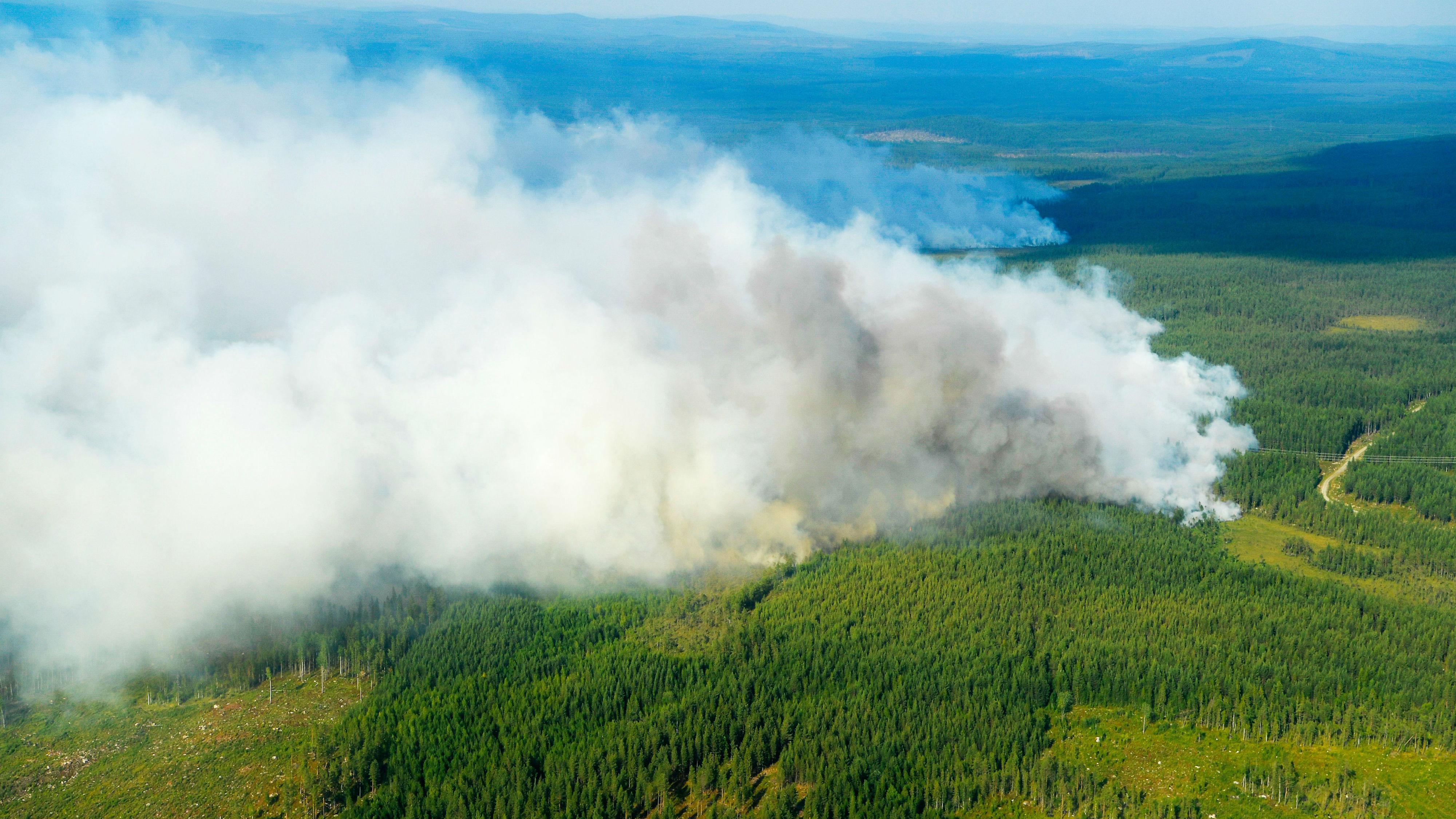 Sweden S Worst Natural Disaster