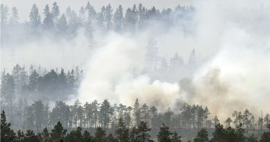 Swedish municipalities to cooperate in fighting future wildfires